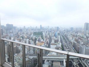 阿波座ライズタワーズフラッグ46の画像