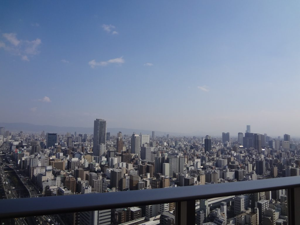 阿波座ライズタワーズフラッグ46